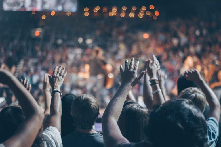 Concerte petreceri multimi